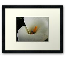 INCOMING GUEST Framed Print