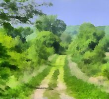 Green Lane by Linda Miller Gesualdo