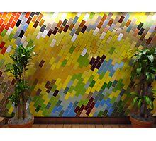 Philadelphia mosaics 5 Photographic Print