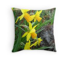 Daffodils are announcing spring  Throw Pillow