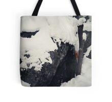 Hidden Landmark Tote Bag