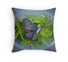 Digital Butterfly - Eastern Tailed-Blue Throw Pillow