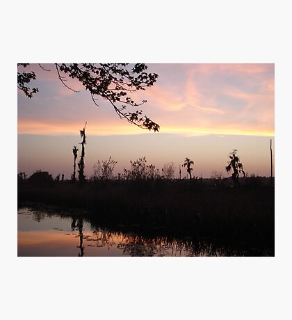 LEMON SLICE SUNSET Photographic Print