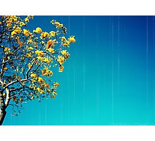 when will i see you again  Photographic Print