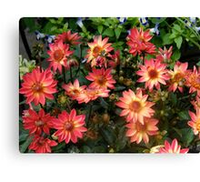 A Beautiful Bunch of Flowers Canvas Print