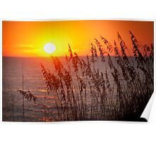Indian Rocks Beach at Sunset Poster