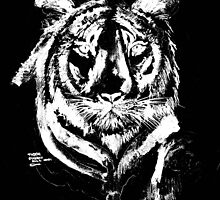 TIGER IN CHALK COLLECTION ALL /TEES/MUGS,DECOR, by Shoshonan