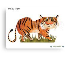 Bengal Tiger caricature Canvas Print