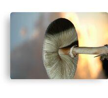 Fungi 6 Canvas Print