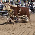 Marijig Rodeo by John Vandeven