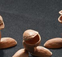 Pistachio Nuts Sticker