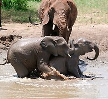 Playing in the mud by rmc314