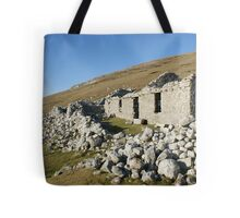 Old deserted house in Port Tote Bag