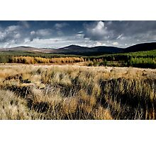 Wicklow, Ireland. Photographic Print