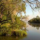 Brisbane River Dawn by grannyshot