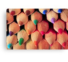 Coloured Pencils Canvas Print