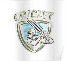 Cricket Player Batsman Batting Shield Etching Poster