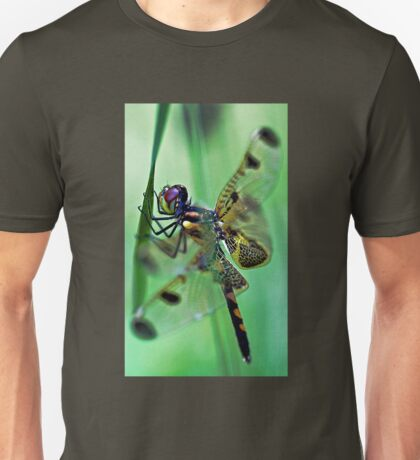 Dragonfly - At Rest T-Shirt