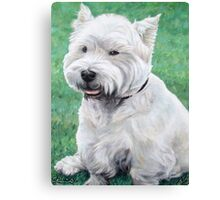 White West Highland Terrier Canvas Print