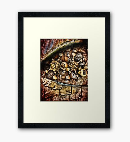 In The Eyes Of The World Framed Print