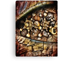 In The Eyes Of The World Canvas Print