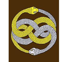 The Neverending Story - Auryn Book Symbol Photographic Print