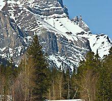 Uphill Skier by Yukondick
