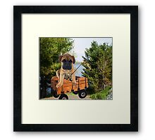 AW LOOKI THERE I CAUGHT A BITE..CUTE PUG CANINE GOES FISHING ..PICTURE...PILLOW...TOTE BAG...ECT... Framed Print
