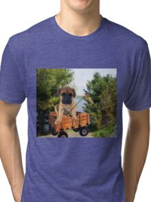 AW LOOKI THERE I CAUGHT A BITE..CUTE PUG CANINE GOES FISHING ..PICTURE...PILLOW...TOTE BAG...ECT... Tri-blend T-Shirt