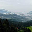 Misty Hills by Xandru