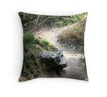 Footpath Throw Pillow