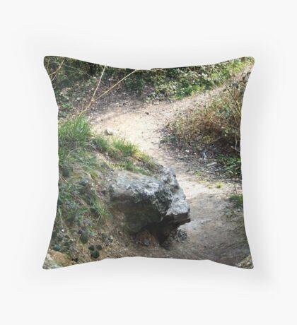 Footpath Throw Pillow