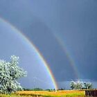 Double Rainbows by Edmond  Hogge