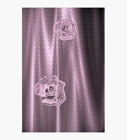 Pink Sheer Photographic Print