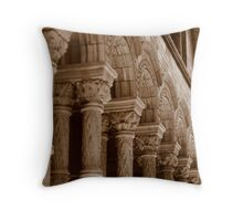 Natural History Arches Throw Pillow