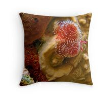 Christmas Tree Worm Macro 3 Throw Pillow