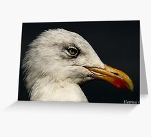 The Herring Gull Greeting Card