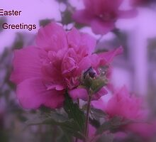 Easter Greetings by kkphoto1