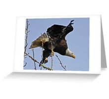 Two Fist Full of Feathers  Greeting Card