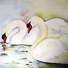 Swan Pair by ddonovan