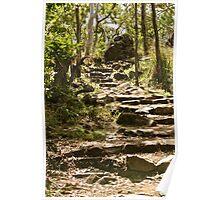 Bush Walk Path Poster