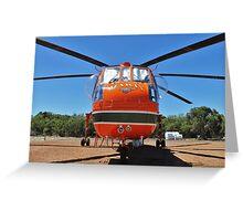 N243AC Erikson Sky Crane Greeting Card