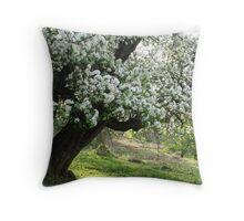 Crab apple tree on spring morning Throw Pillow