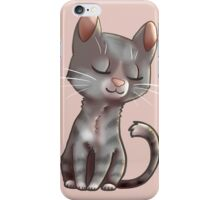 Content Kitty iPhone Case/Skin