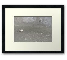 Lawrence Park Framed Print