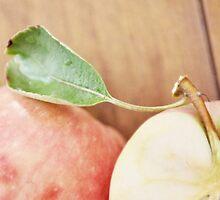 first harvest :: apples {4} by RachelMeszaros