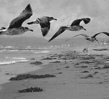 ON THE BEACH by Paul Quixote Alleyne