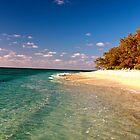 Resort Lagoon - Lady Elliot Island  by AmyLee2694
