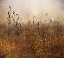 Tangle by Sarah Jarrett