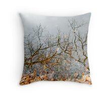 Autumn Reflections in Alloway Lake, NJ Throw Pillow